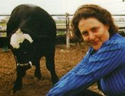 Temple Grandin's experiences with Autism have helped in her work with livestock management